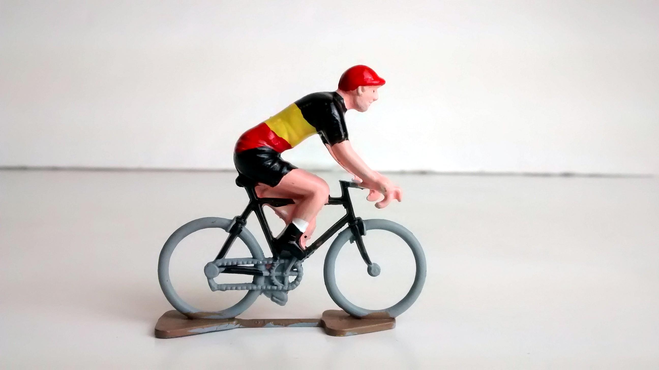 Belgian Champion